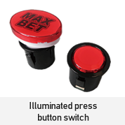 Illuminated press button switch